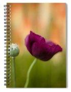 Stark Poppies Spiral Notebook