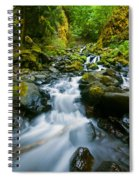 Starvation Creek Falls Spiral Notebook