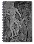 Statue 17 Black And White Spiral Notebook