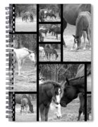 Stay Close Spiral Notebook