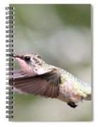Stay Low Spiral Notebook
