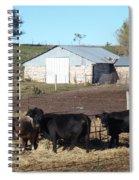 Steers Spiral Notebook