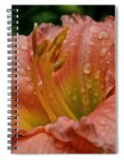 Stella's Ruffled Fingers Spiral Notebook