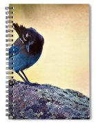 Stellers Rock Spiral Notebook