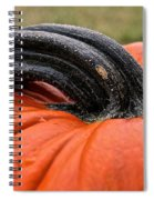 Stemmed Spiral Notebook