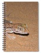 Stenodactylus Petrii Or Dune Gecko Spiral Notebook