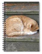 Step Sleeper Spiral Notebook