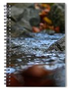 Stepping Stone Spiral Notebook