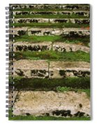 Steps On The Central Walk, Lismore Spiral Notebook