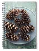Stil Life With  Seven Pine Cones Spiral Notebook