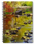 Still Golden Waters Spiral Notebook