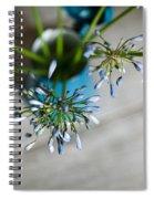Still Life 04 Spiral Notebook