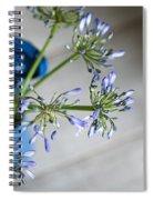 Still Life 05 Spiral Notebook