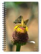 Still Plenty Of Honey Spiral Notebook