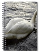 Still Waters Run Deep Spiral Notebook