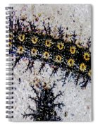 Stinging Caterpillars Spiral Notebook