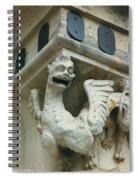 Stone Beastie Spiral Notebook