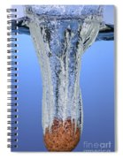 Stone Dropped In Water Spiral Notebook