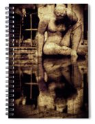 stone in reflexion - Statue reflected in a sea of doubt in vintage process Spiral Notebook