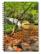 Stone Mountain Lower Falls Spiral Notebook