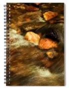 Stone Mountain River Rocks Spiral Notebook