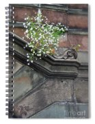 Stone Soil Spiral Notebook