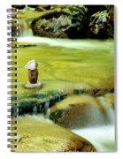 Stone Works Spiral Notebook