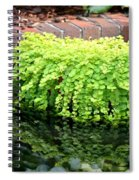 Stoneside Reflections Spiral Notebook