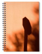 Solar Signs 2009 Limited Edition 1 Of 1 Spiral Notebook