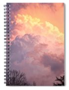 Storm Cloud Moving In On West Michigan Spiral Notebook