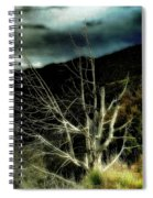 Storm Over The Jemez Mountains Spiral Notebook