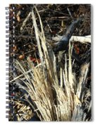 Storm Splinters Spiral Notebook