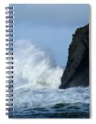 Storm Watch Spiral Notebook