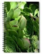 Strand Succulent Spiral Notebook
