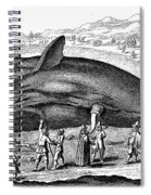 Stranded Whale, 1577 Spiral Notebook