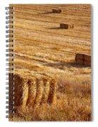 Straw Field Spiral Notebook