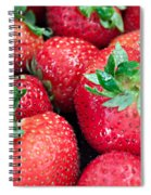 Strawberry Delight Spiral Notebook