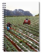 Strawberry Farm Spiral Notebook