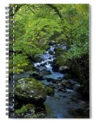 Stream Flowing Through A Forest Spiral Notebook