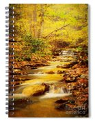 Streams Of Gold Spiral Notebook