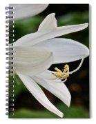 Stretching Stamen Spiral Notebook