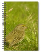 Stretching The Wings  Spiral Notebook