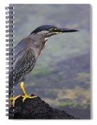Striated Heron Spiral Notebook