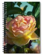 Strike It Rich Rose Spiral Notebook
