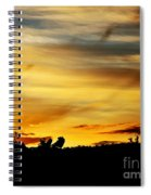Stripey Sunset Silhouette Spiral Notebook