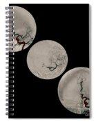 Stroke Treatment Spiral Notebook
