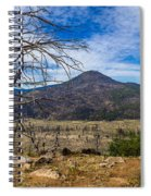 Studies On Sugarloaf Peak 1 Spiral Notebook