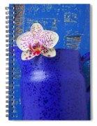 Study In Blue Spiral Notebook