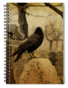 Study Of The Surly Raven Spiral Notebook