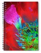 Stylized Flower Center Spiral Notebook